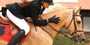 Imagem do post: Arte de montar a Cavalo