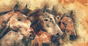 Imagem do post: Cara inchada em equinos: O que você sabe sobre essa doença?