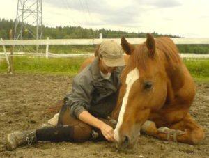 Imagem do post: Cumplicidade entre homem e o cavalo