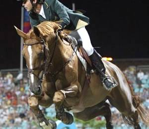 Imagem do post: Doping: substâncias proibidas para cavalos