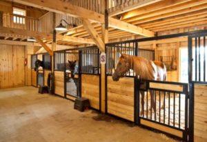 Imagem do post: Qualidade das baias para equinos