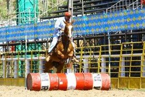 Imagem do post: Encerrado o 25º Campeonato de Quarto de Milha, no Rio de Janeiro