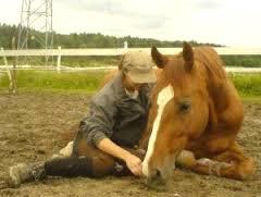 Imagem do post: Relação de amizade: Cavalo e Homem