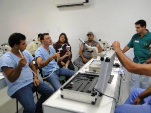 Imagem do post: Transferência de embriões em equinos: atenção a todos os componentes!