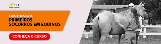 CPTCP – Curso de Primeiros Socorros em Equinos