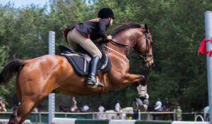 Imagem do post: Nutrição de cavalos atletas: entenda os principais pontos ligados à alimentação